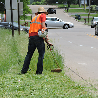 Accelerated Grass Growth: Proceed with Caution